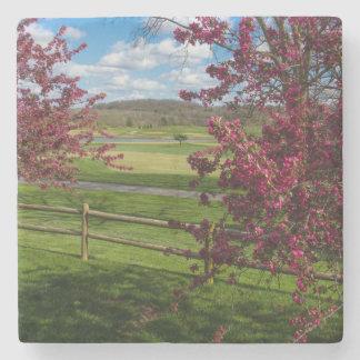 Porta Copos De Pedra Dia de primavera em Rivercut