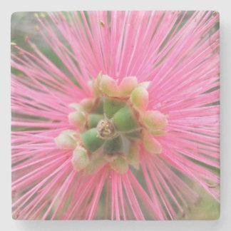Porta Copos De Pedra Flor cor-de-rosa da árvore de goma