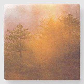 Porta Copos De Pedra Floresta dourada da corriola
