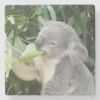 Porta Copos De Pedra Koala que come a folha da goma