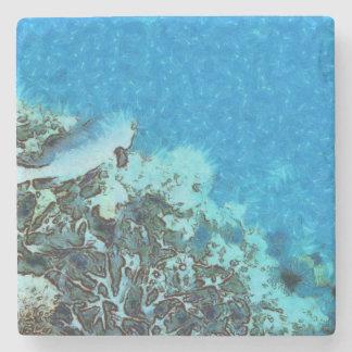 Porta Copos De Pedra Peixes que movem-se sobre o recife