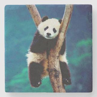 Porta Copos De Pedra Urso de panda