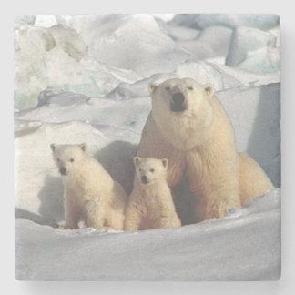 Porta Copos De Pedra Urso polar