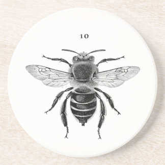 Porta copos do arenito da abelha 10