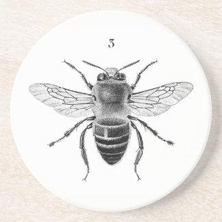 Porta copos do arenito da abelha 3