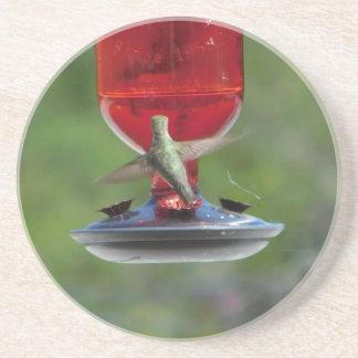Porta copos do colibri
