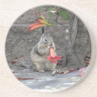 Porta-copos Esquilo Loving da flor