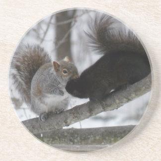 Porta-copos Esquilo preto