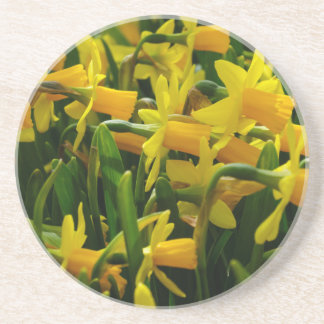 Porta-copos Família do Daffodil