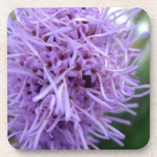 Porta-copos Flor da violeta da aranha do tentáculo