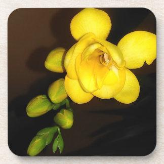 Porta-copos Flor e botão amarelos do Freesia