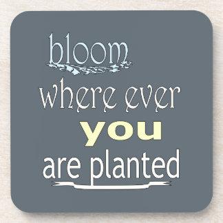 Porta Copos Flor onde você é plantado nunca