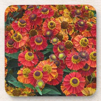 Porta Copos Flores vermelhas e alaranjadas do helenium