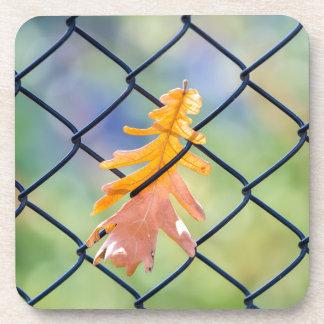Porta-copos Folha da queda travada em uma cerca