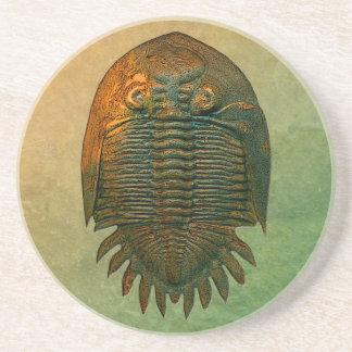 Porta copos fóssil de Neometacanthus Trilobite