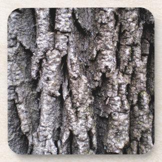 Porta-copos Fotografia do latido de árvore