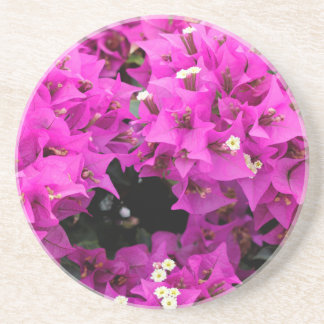 Porta-copos Fundo fúcsia roxo do Bougainvillea