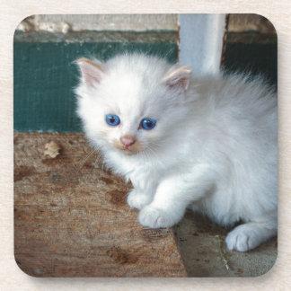 Porta-copos Gatinho branco