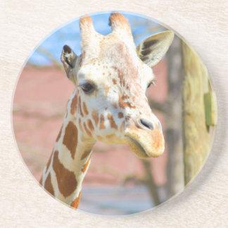 Porta-copos Girafa