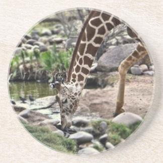 Porta-copos Girafa gracioso