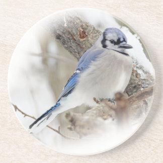Porta-copos Jay azul na neve do inverno