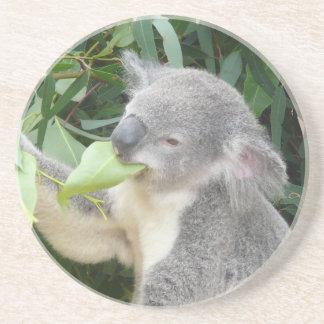 Porta-copos Koala que come a folha da goma