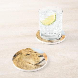 Porta-copos Leão grande que olha longe