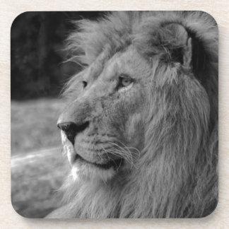 Porta Copos Leão preto & branco - animal selvagem