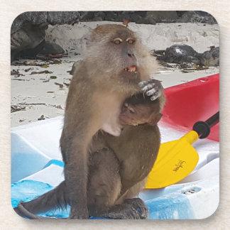 Porta Copos Mãe & bebê do macaco