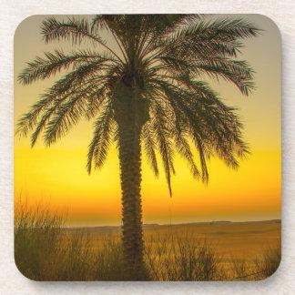 Porta Copos Nascer do sol da palmeira