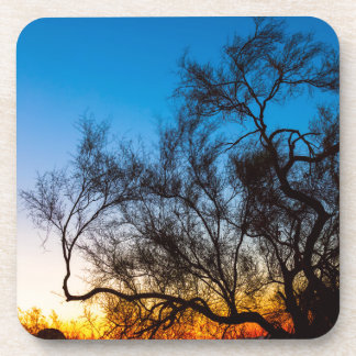 Porta Copos Nascer do sol da silhueta da árvore de Palo Verde