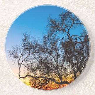 Porta-copos Nascer do sol da silhueta da árvore de Palo Verde