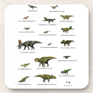 Porta-copos Nomes dos dinossauros