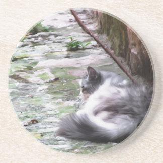 Porta-copos O sono macio do gato agacha-se no assoalho