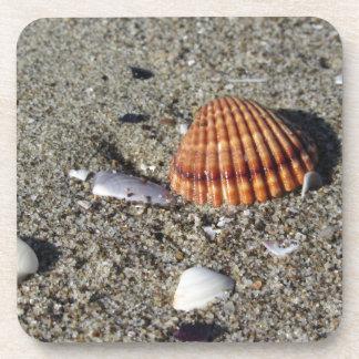 Porta Copos Os Seashells no verão da areia encalham a opinião