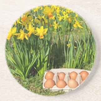 Porta-copos Ovos na caixa na grama com daffodils amarelos