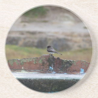 Porta-copos pássaro em uma parede