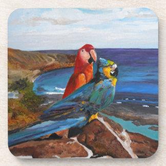 Porta Copos Pássaros tropicais que negligenciam a baía