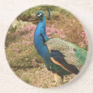 Porta-copos Pavão do verde azul e da laranja