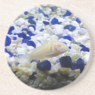 Porta-copos Peixes seixos e do gato azuis e brancos do albino