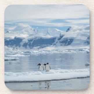 Porta-copos Pinguins em um iceberg