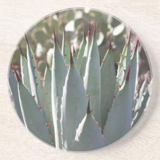 Porta-copos Pontos da agave