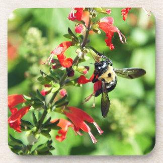 Porta Copos Portas copos felizes da abelha
