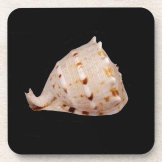 Porta-copos Portas copos plásticas duras de Shell do Conch