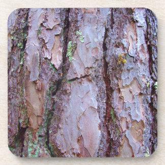 Porta-copos Portas copos plásticas duras do latido de pinheiro