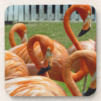 Porta Copos Portas copos plásticas duras dos flamingos