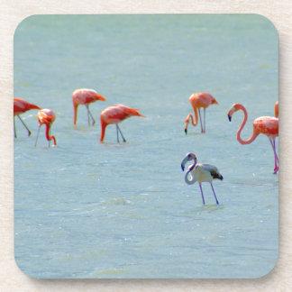 Porta Copos Rebanho cinzento e cor-de-rosa dos flamingos no