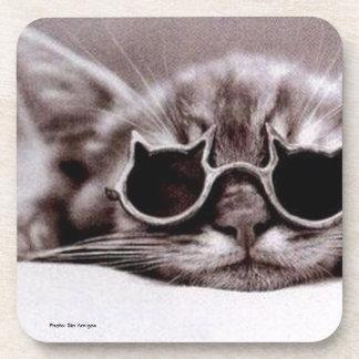 Porta copos viva da bebida do gato o mais fresco