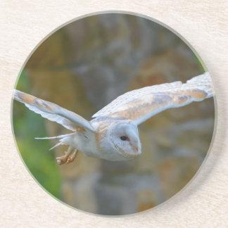 Porta-copos Vôo da coruja de celeiro