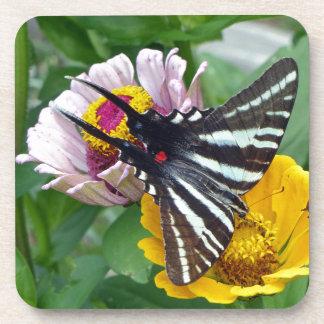 Porta-copos Zebra Swallowtail+Besouro japonês